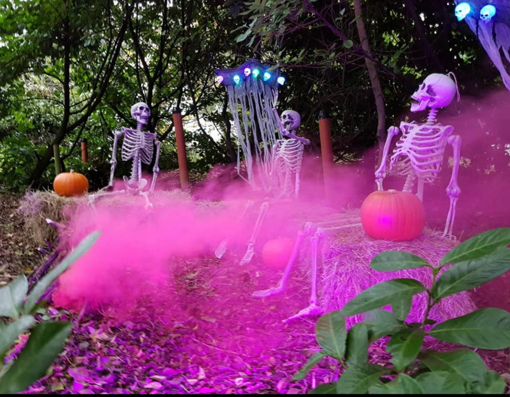 Clonfert Pet Farm | Halloween Evens in Ireland | YourDaysOut