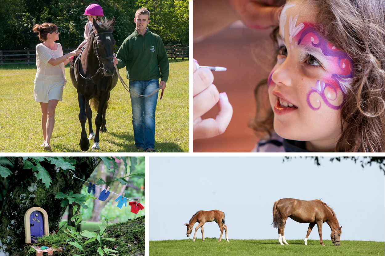 Irish National Stud | Halloween Events in Ireland | YourDaysOut