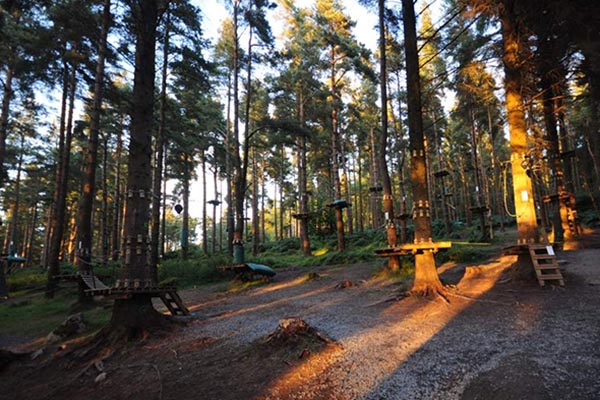 Zipit Forest Adventure | Things to do in Dublin | YourDaysOut