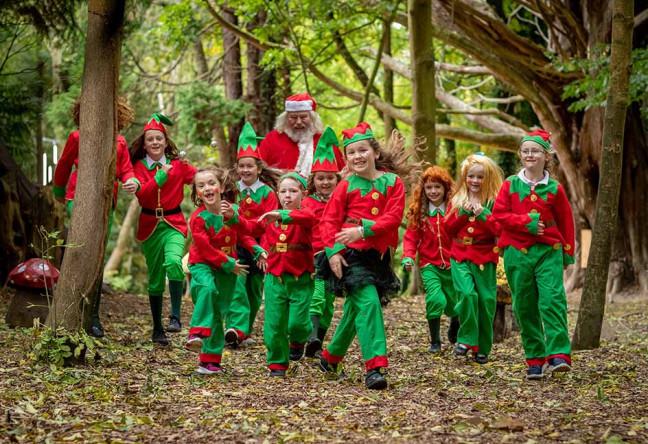 Woodland Santa | Castlecomer Discovery Park | YourDaysOut
