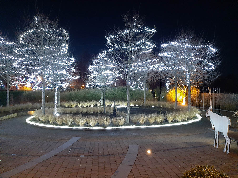 Delta Sensory Gardens | Christmas Lights | YourDaysOut
