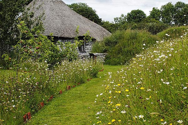 Brigit's Garden | Things to do in Galway | YourDaysOut