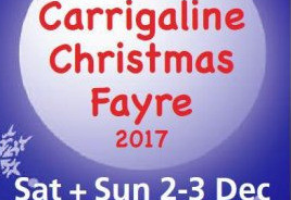 Things to do in County Cork, Ireland - Carrigaline Christmas Fayre - YourDaysOut
