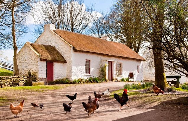 Things to do in Northern Ireland Omagh, United Kingdom - Ulster American Folk Park - YourDaysOut