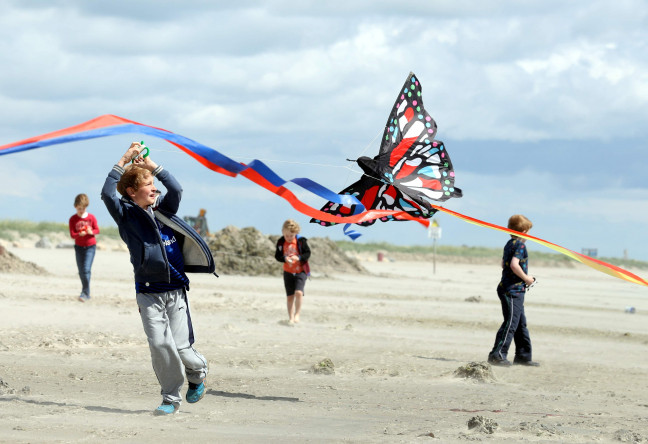 Things to do in County Dublin, Ireland - Dublin KiteFest - YourDaysOut