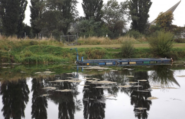 Things to do in County Laois, Ireland - Athy & District Anglers Club - YourDaysOut