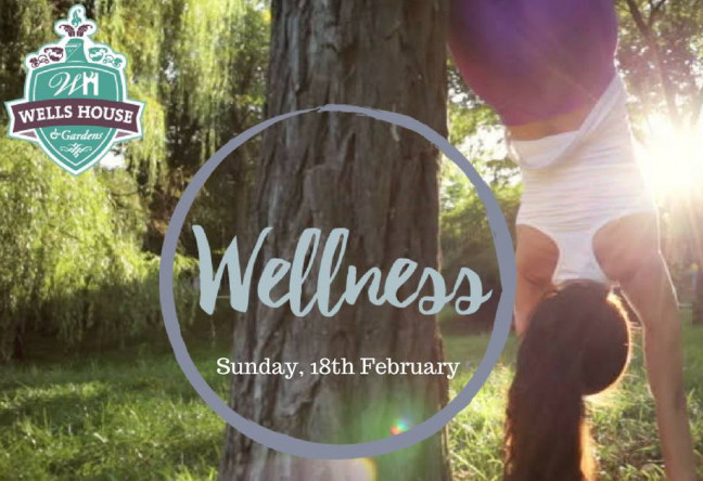Things to do in County Wexford, Ireland - Wells for Wellness - YourDaysOut