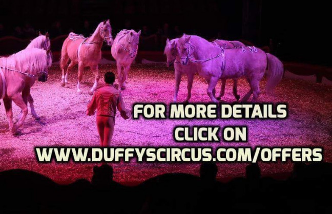 Things to do in County Wexford, Ireland - Duffys circus Gorey - YourDaysOut