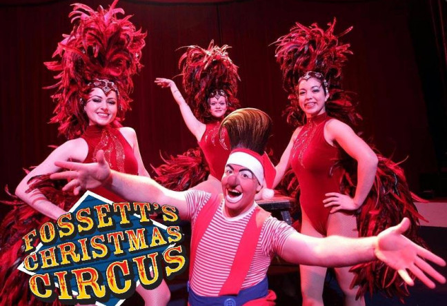 Things to do in County Dublin, Ireland - Fossett's Circus - YourDaysOut