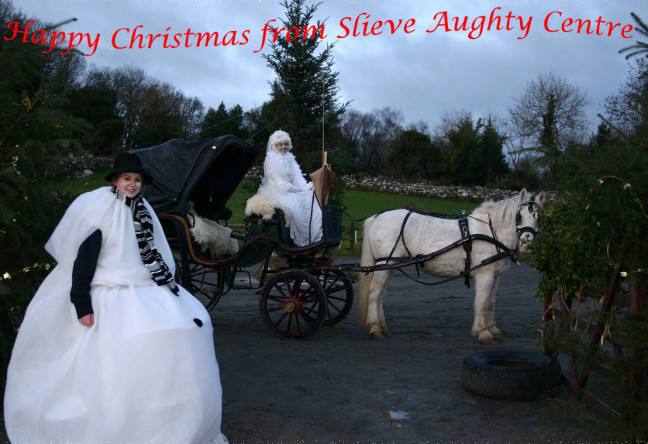 Things to do in County Galway, Ireland - An Enchanted Christmas - YourDaysOut