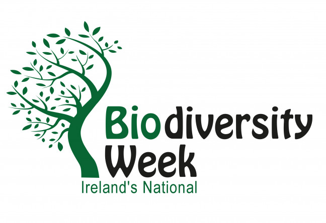 Things to do in County Kildare, Ireland - Biodiversity Week - YourDaysOut