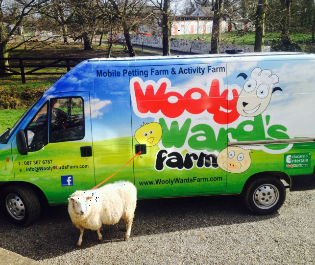 Things to do in County Dublin, Ireland - Wooly Farm - YourDaysOut