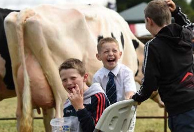 Things to do in County Carlow, Ireland - Tullow Show - YourDaysOut