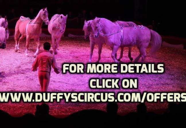 Things to do in County Waterford, Ireland - Duffy's circus Clonea Strand - YourDaysOut