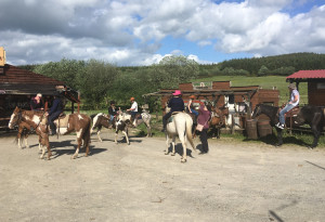 Things to do in County Laois, Ireland - Fossey Mountain Springs Ranch - YourDaysOut