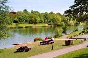 Chorlton Water Park - YourDaysOut