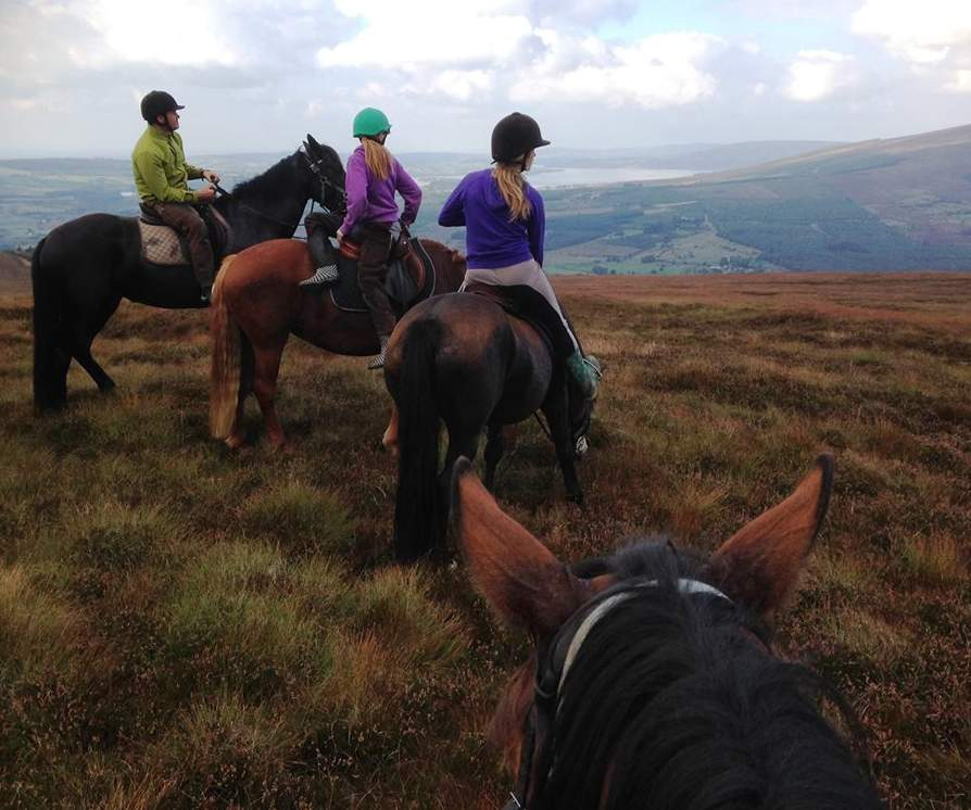Things to do in County Wicklow, Ireland - Hollywood Horse and Pony Trekking - YourDaysOut