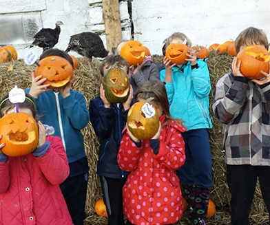 Things to do in County Dublin, Ireland - Wooly Ward's Farm Halloween Event - YourDaysOut
