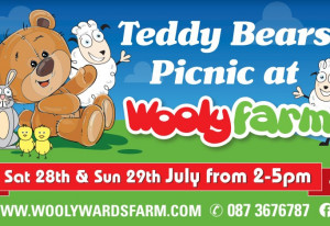Things to do in County Dublin, Ireland - Teddy Bear's Picnic - YourDaysOut