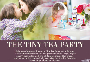 Things to do in County Wexford, Ireland - The Tiny Tea Party - YourDaysOut