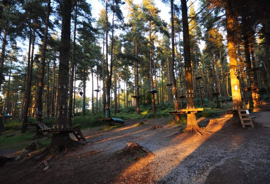 Zipit Forest Adventures, Roscommon - YourDaysOut