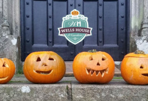 Things to do in County Tipperary, Ireland - Halloween at Wells House - YourDaysOut