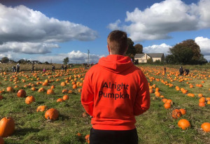 Things to do in County Meath, Ireland - The Alright Pumpkin Patch - YourDaysOut