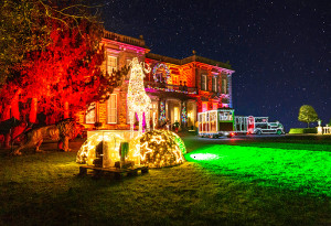 Things to do in County Kildare, Ireland - Santa's House Express - Santa Train Experience - YourDaysOut