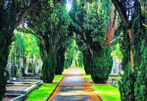 Things to do in County Dublin Dublin, Ireland - Mid Term Tales at Glasnevin Cemetery Museum - YourDaysOut