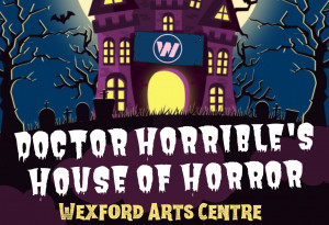 Things to do in County Wexford, Ireland - Doctor Horrible's House of Horror - YourDaysOut