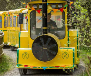 Things to do in County Wicklow, Ireland - Rathwood Easter Train - YourDaysOut