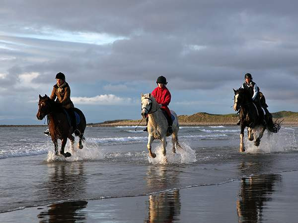 Things to do in County Sligo, Ireland - Island View Riding Stables - YourDaysOut