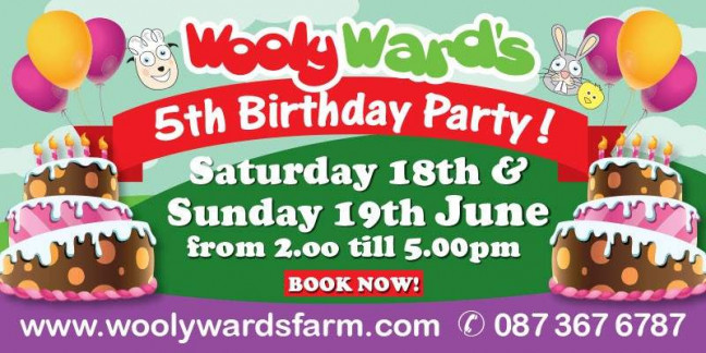 Things to do in County Dublin, Ireland - Wooly Ward's Farm 5th Birthday Party - YourDaysOut