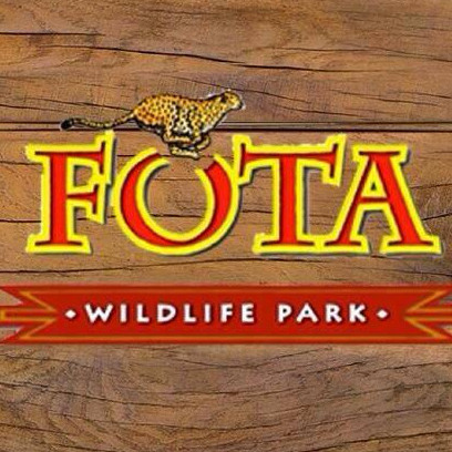 Music Workshop | Fota Wildlife Park logo